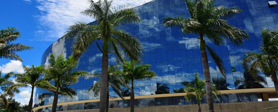 Modern building, mirrored exterior, south Florida palm trees reflection